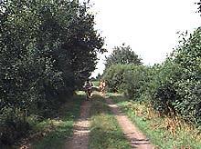 Radwanderweg