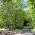 Ortsausgang Richtung Horsbek