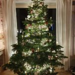 Symbolbild geschmückter Weihnachtsbaum