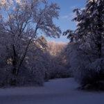 Winter in Wallsbüll - Foto: Anja P.